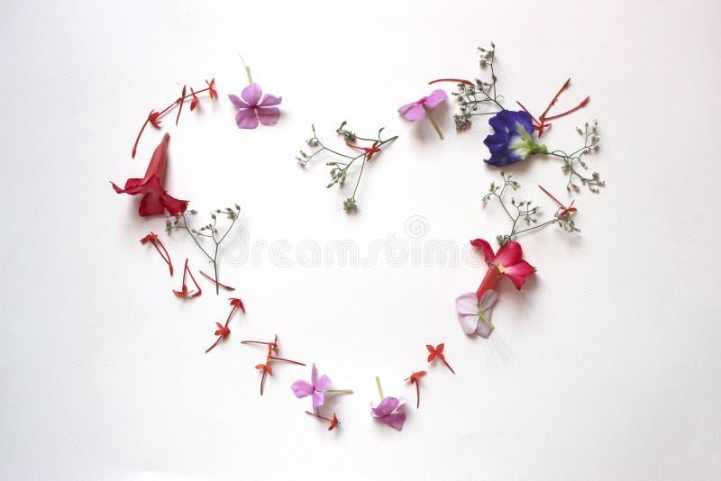 Cuore floreale di estati con i fiori fotografia stock libera da diritti