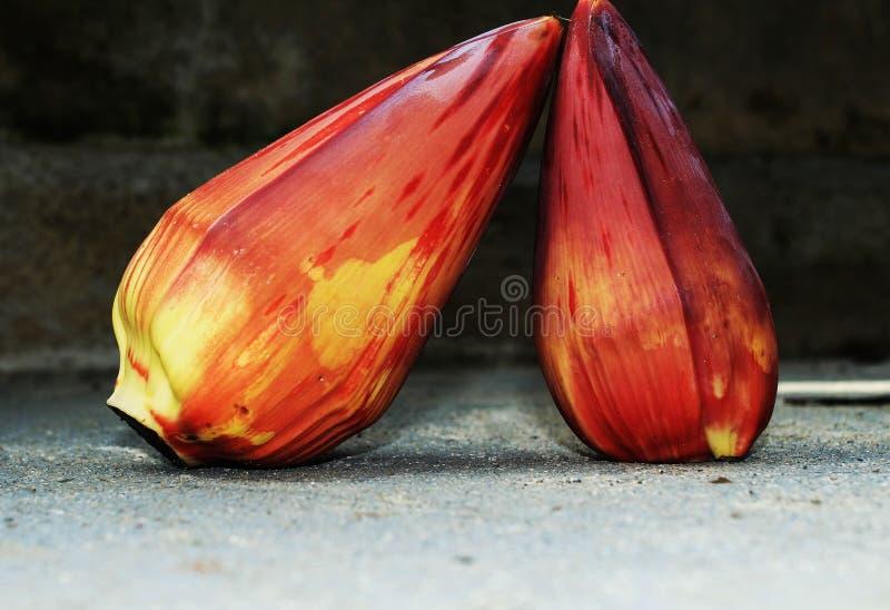 Cuore indigeno Filippine della banana fotografia stock libera da diritti