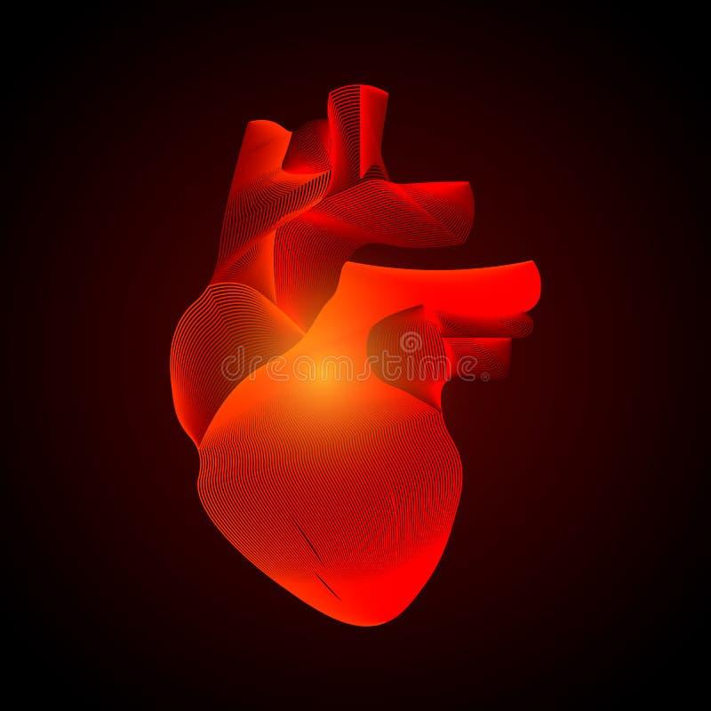 Cuore isolato vettore con il centro di dolore organo umano bianco 3D su fondo scuro Concetto della medicina con la linea Dolore a royalty illustrazione gratis