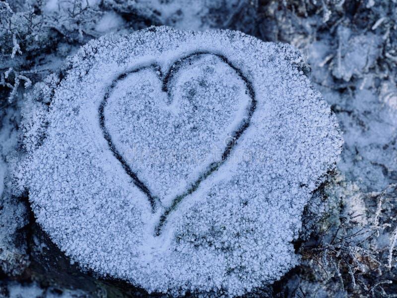 Cuore nella neve su un tronco di albero immagini stock