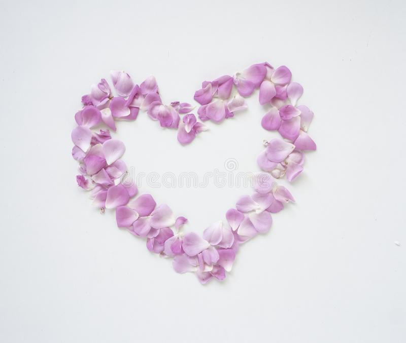 Cuore rosa del petalo di rose a forma di immagini stock libere da diritti