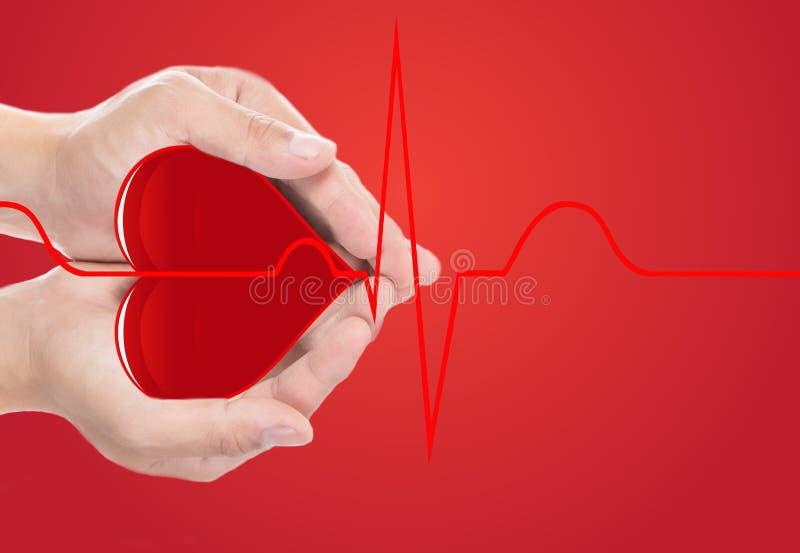 Cuore rosso della copertura della mano e cardiografo normale fotografia stock