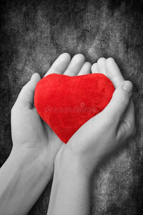 cuore rosso in mani fotografia stock libera da diritti