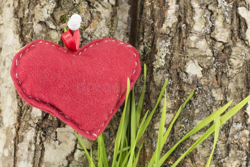 Cuore rosso su una corteccia di albero immagine stock
