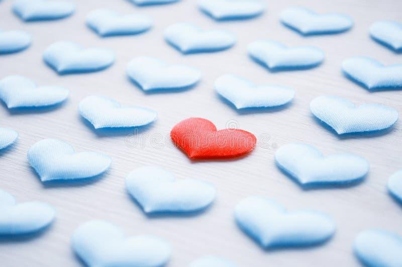 Cuore rosso sui precedenti bianchi fra i cuori blu, DOF basso Cardiologia e concetto sano di cura del cuore immagini stock