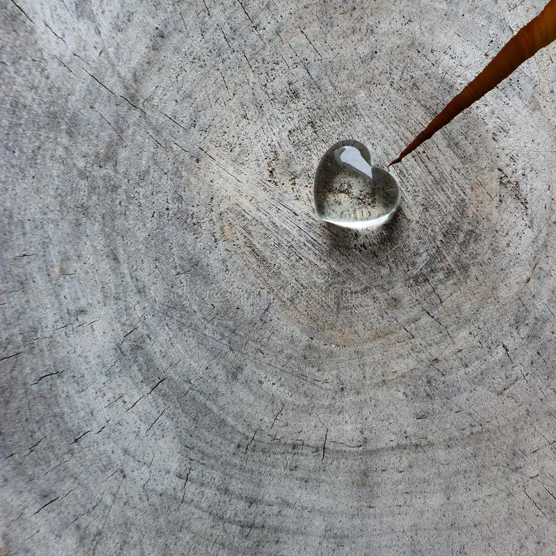 Cuore trasparente su una superficie ruvida del bollo stagionato con gli anelli di vecchio legno e di una crepa Cartolina d'auguri fotografie stock libere da diritti