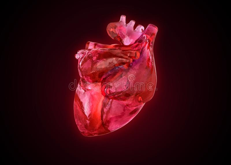 Cuore umano anatomico come pietra preziosa, illustrazione vettoriale