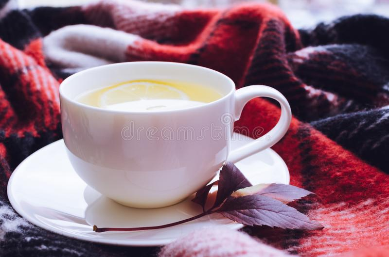 Cup of autumn tea. Cup of tea with lemon and warm woolen blanket on window sill. Hot drink for rainy days. Hygge concept, autumn mood. Cozy autumn morning at stock photo