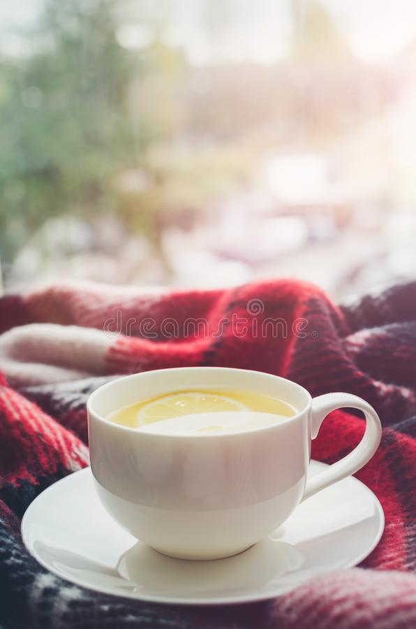 Cup of autumn tea. Cup of tea with lemon and warm woolen blanket on window sill. Hot drink for rainy days. Hygge concept, autumn mood. Cozy winter morning at royalty free stock image