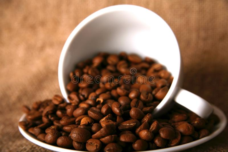 Cup and beans of coffee