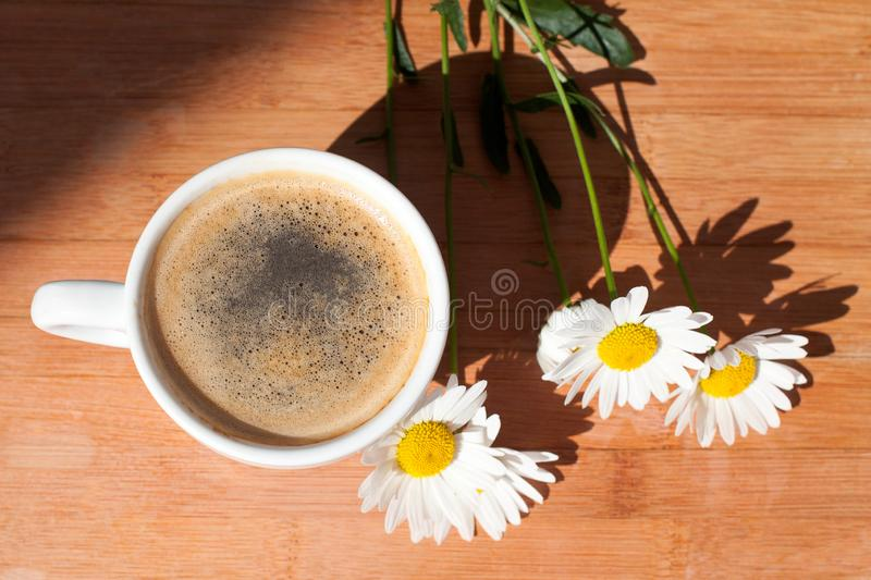 A Cup Of Black Coffee Branch Of White Daisy Flowers On Wooden Background In Morning Bright Sunligh With Shadow Stock Image Image Of Foam Country 143818031 Daisy brown provides examples of: a cup of black coffee branch of white