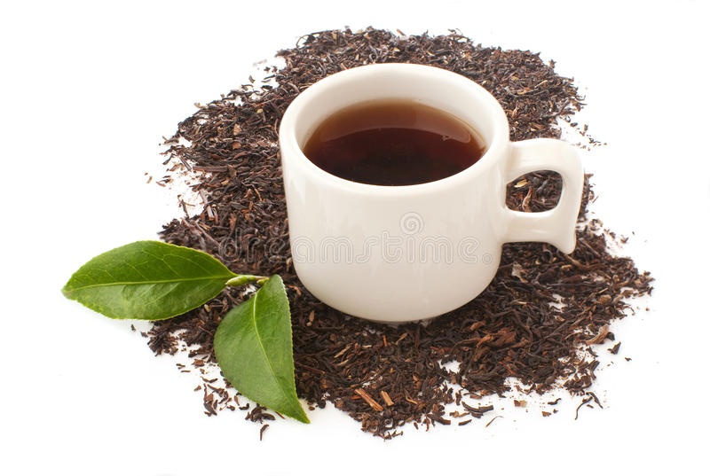 Cup of black tea and dry leaves royalty free stock images