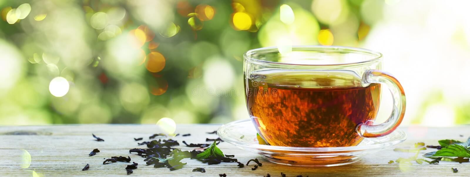 Cup of black tea on the nature summer background, selective focus, copy space, banner royalty free stock photo