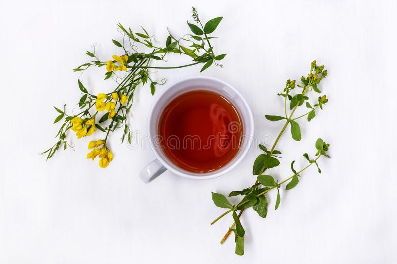 Cup of black tea with wild medicinal flowers on a white background stock photography
