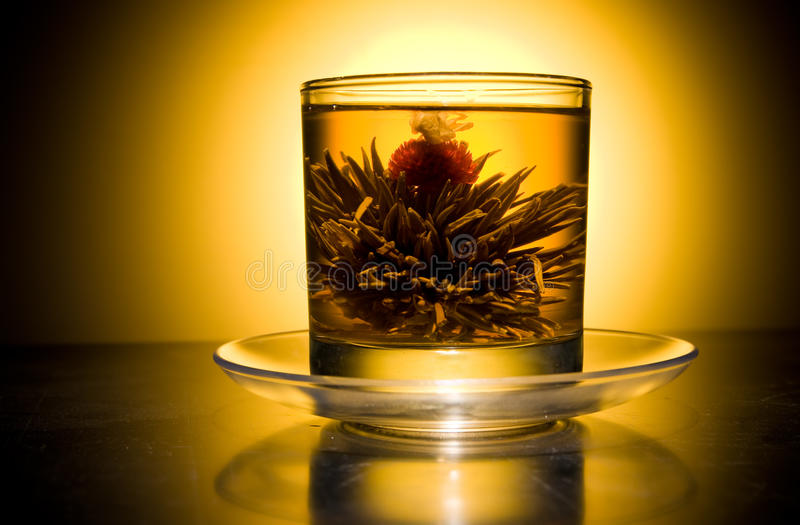 Download Cup With Blooming Flower Tea Stock Photo - Image: 10609918