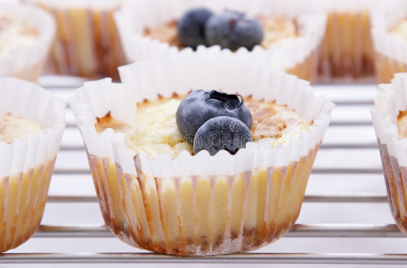 Download Cup Cake stock photo. Image of blueberries, metal, rack - 1404652
