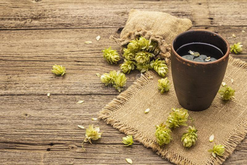 Cup of calming herbal tea with fresh wild hops. Hops cones in sack on vintage boards background stock photo