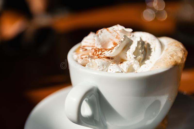Cup Of Cappuccino With Fresh Whipped Cream And Cinnamon On Top royalty free stock photo