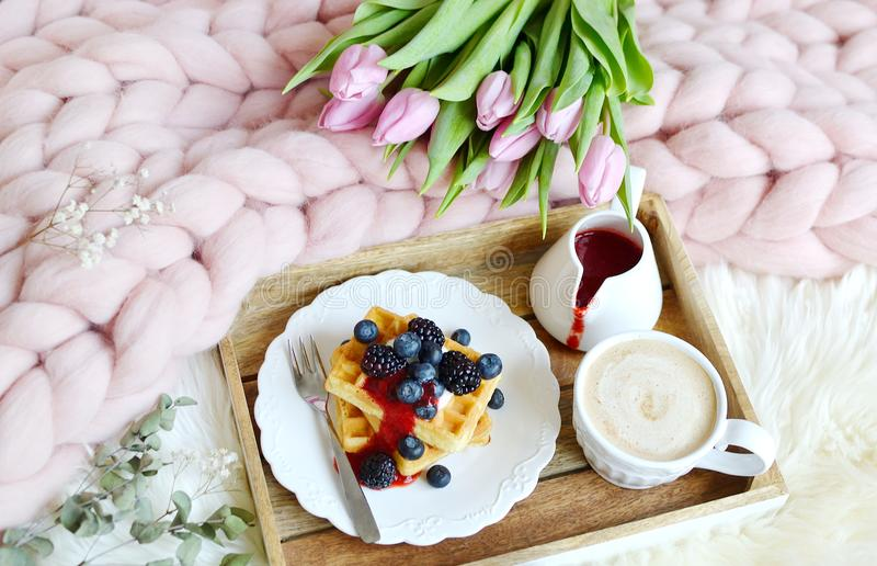 Cup with cappuccino and homemade Belgian waffles with strawberry sauce and berries, pink pastel giant blanket. Fur, bedroom, pink flowers tulips, spring, woman stock image