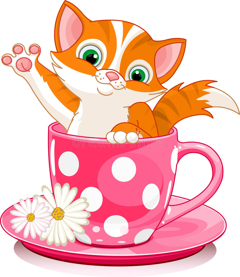 Download Cup cat stock vector. Image of animal, cute, image, sitting - 7899785