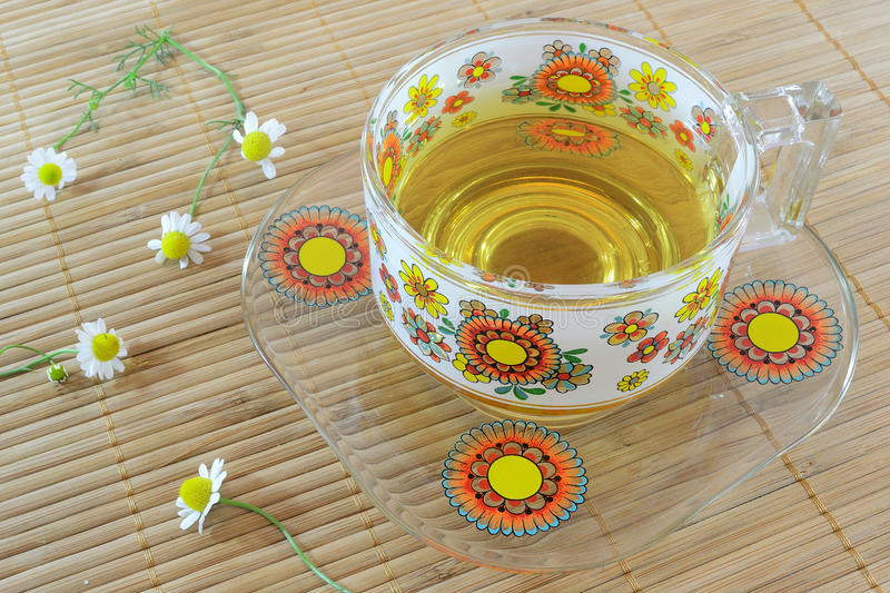 Chamomile tea cup royalty free stock image