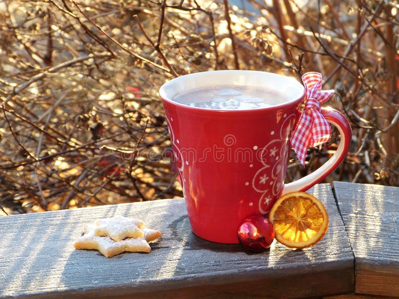 Cup of cocoa and biscuits royalty free stock photo