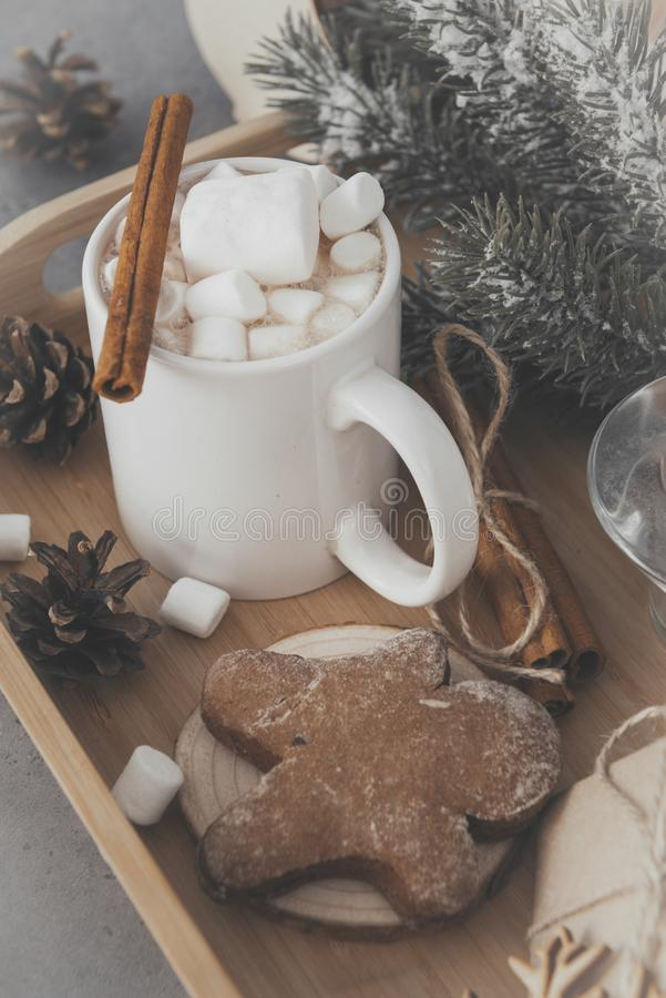 Cup cocoa, hot chocolate with marshmallows and cinnamon, spruce branch, cookies, gingerbread man stock photos