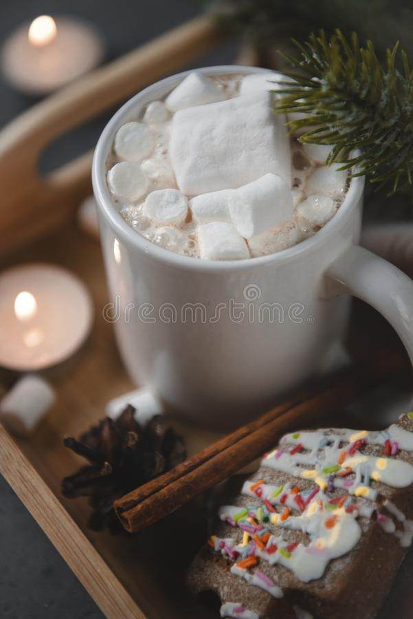 Cup cocoa, hot chocolate with marshmallows, spruce branch, candles on a gray royalty free stock photo