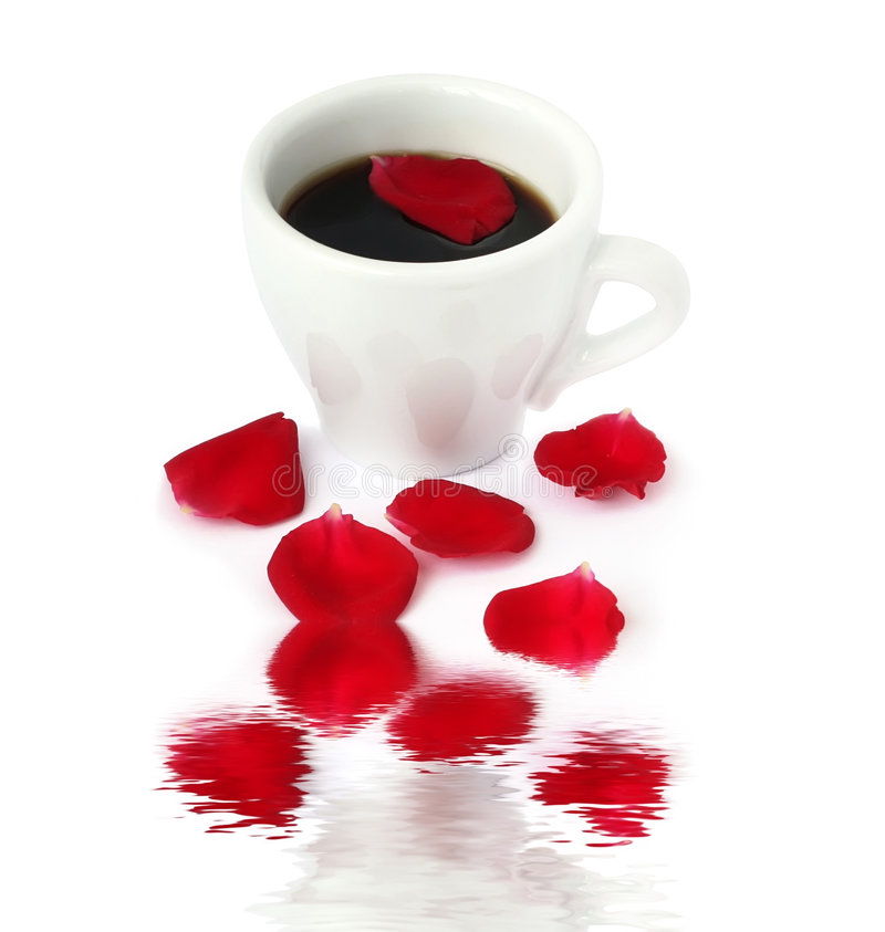 Cup of coffe with rose petal royalty free stock images
