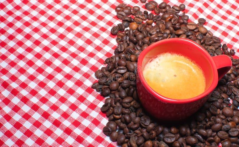 Download Cup of Coffee stock image. Image of foam, break, bean - 19236907