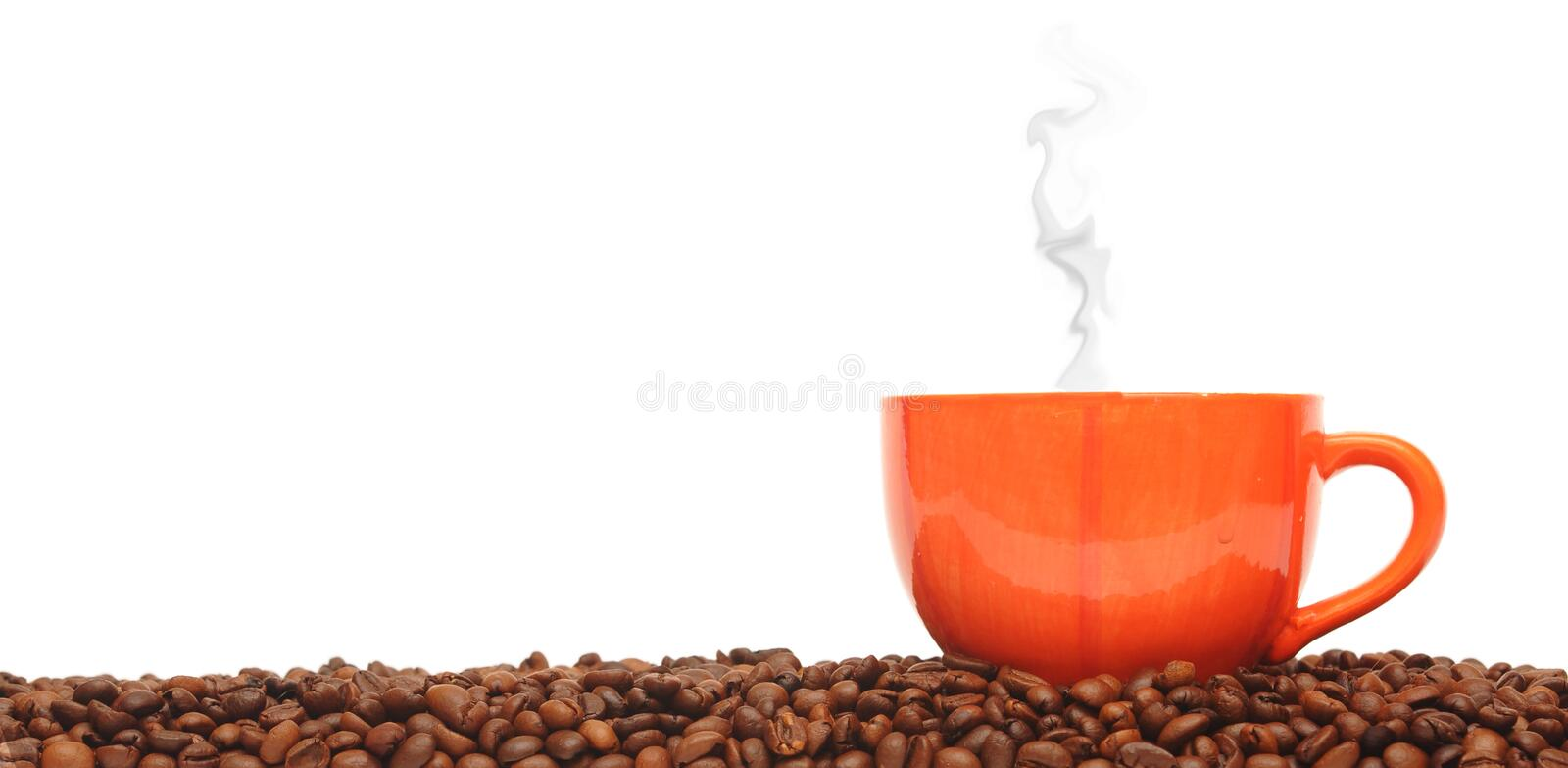 Cup from coffee. On coffee grains stock images