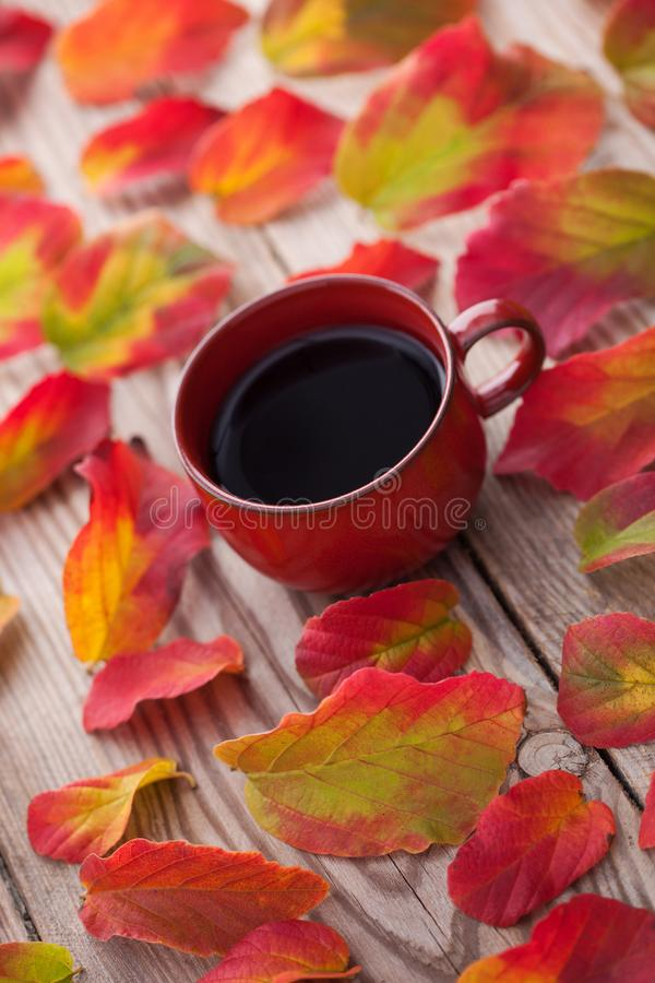 Coffee with autumn leaves stock photos