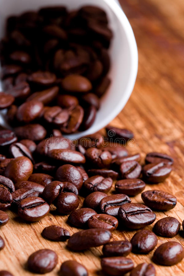 Download Cup with coffee beans stock photo. Image of cappuccino - 16562962