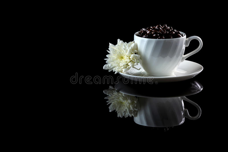 Cup with coffee beans anf white chrysanthemum on a black reflecti. Ve background. Studio shot royalty free stock photo