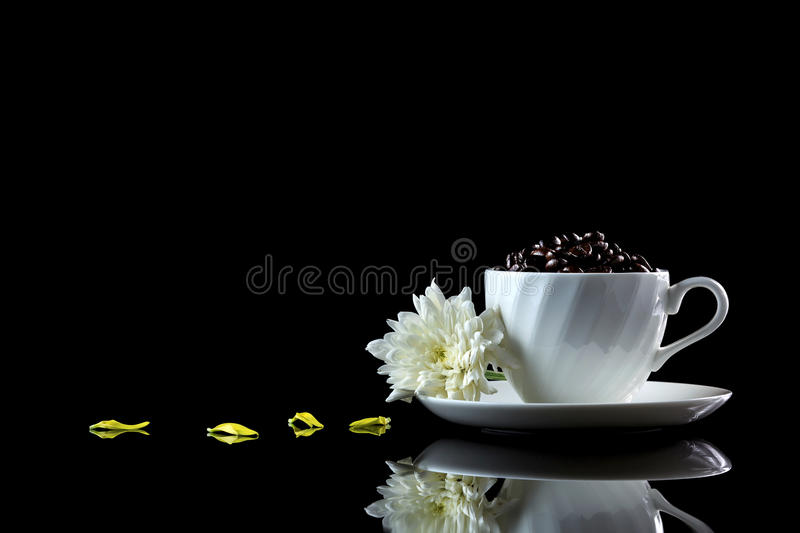 Cup with coffee beans anf white chrysanthemum on a black reflecti. Ve background. Studio shot royalty free stock image