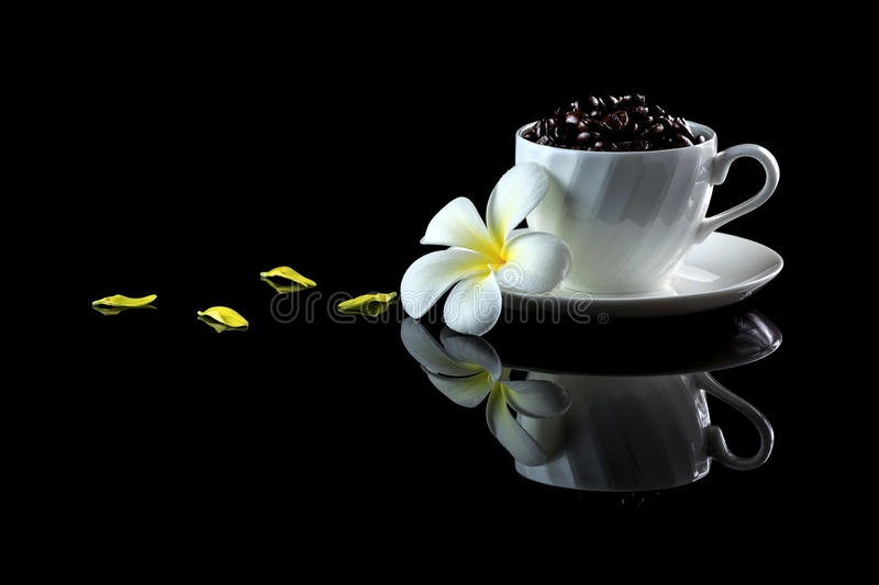 Cup with coffee beans and frangipani on a black reflective backgr. Ound. Studio shot royalty free stock images