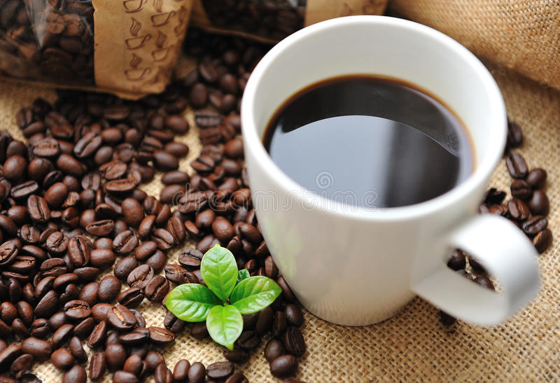 Cup of coffee with beans and leaf stock photography