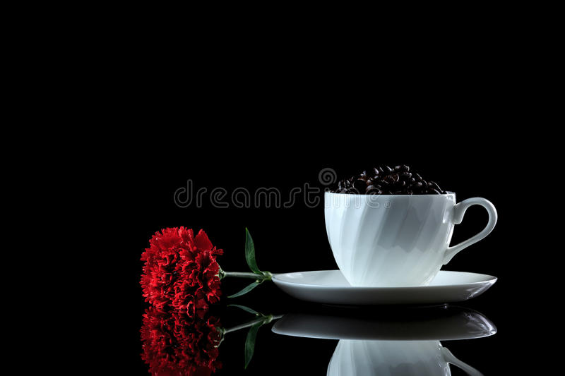 Cup with coffee beans and red carnation on a black reflective bac. Kground. Studio shot stock image