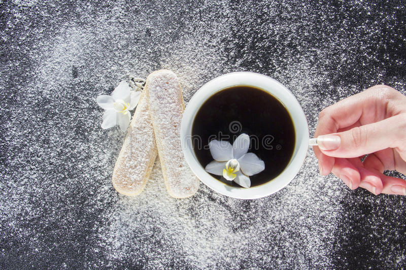 Cup of coffee with biscuits for tiramisu royalty free stock photos