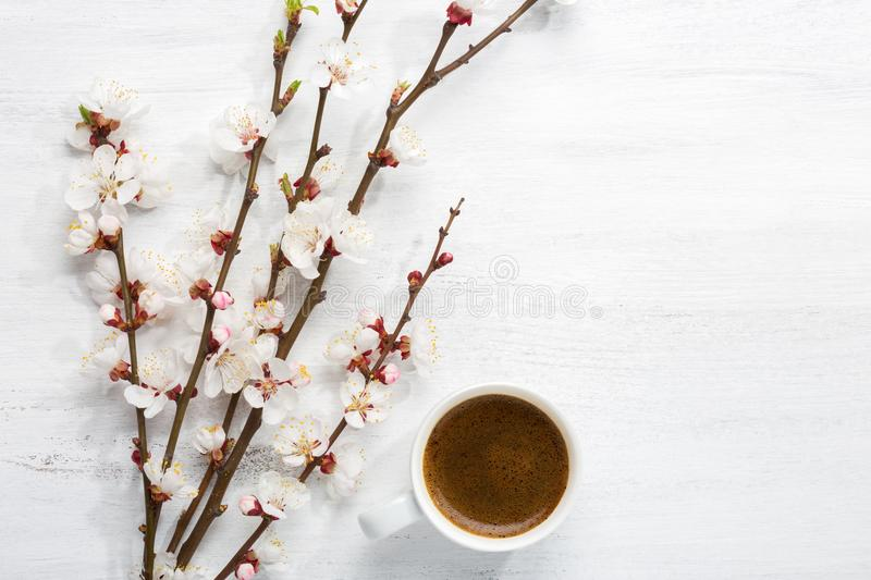 Cup of coffee and branches of blossoming apricot on old wooden shabby background stock photos