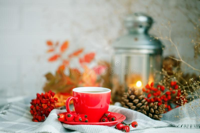 Cup of coffee, cones, berries and autumn leaves on a wooden table. Autumn background. royalty free stock image