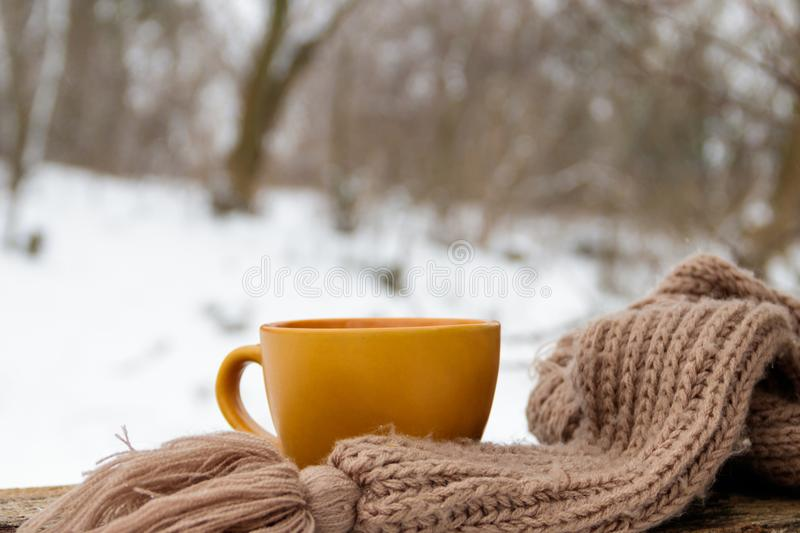 Cup of coffee and cozy knitted scarf on the background of winter forest. Cup of coffee and cozy knitted scarf on the background of the winter forest stock images