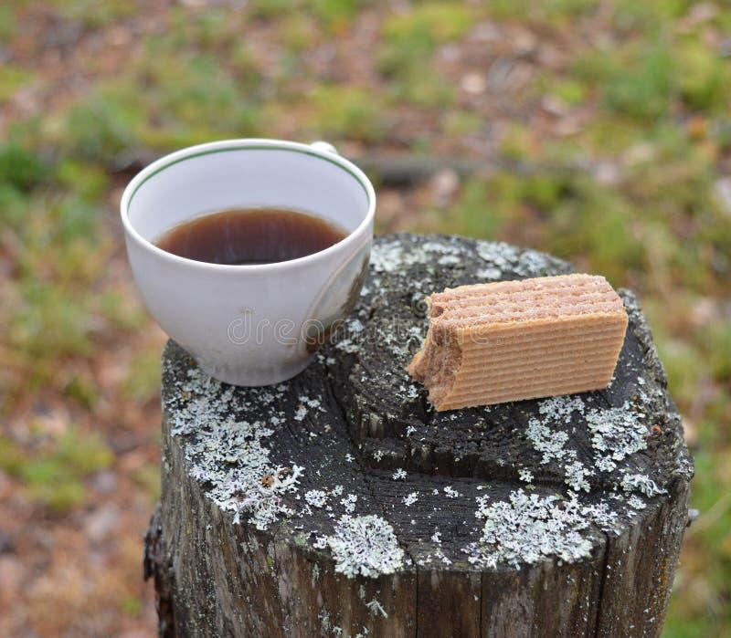 Cup, coffee, drink, tea, food, brown, Breakfast, cake, warm, sugar, forest, hot, chocolate, dessert, sweet, mug, black, white, esp royalty free stock photos