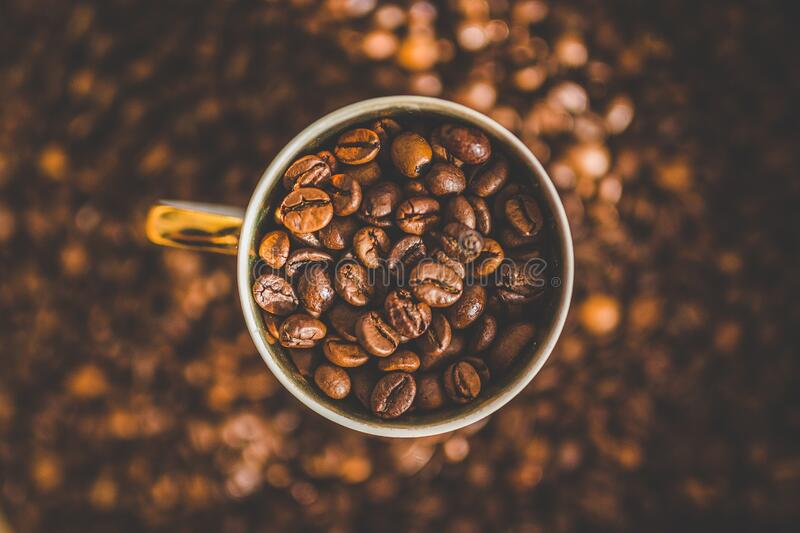 Cup of coffee on dry roasted beans stock photography