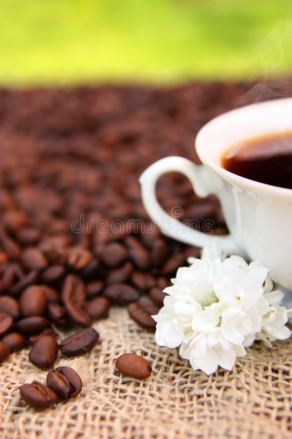Cup of coffee in the garden royalty free stock photos