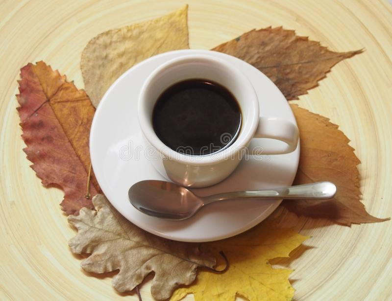 A cup of coffee and leaves royalty free stock photos