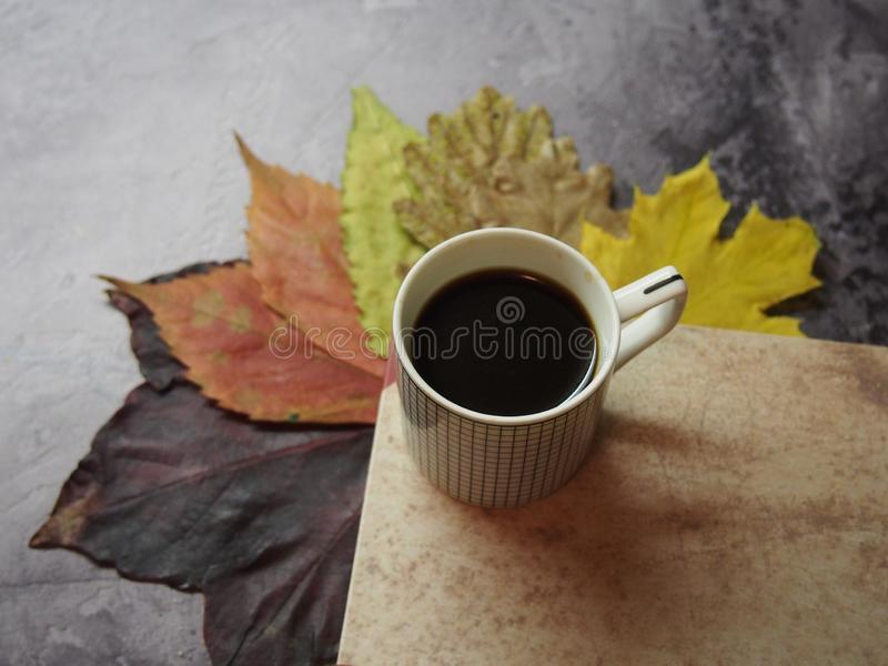 A cup of coffee and leaves royalty free stock photo