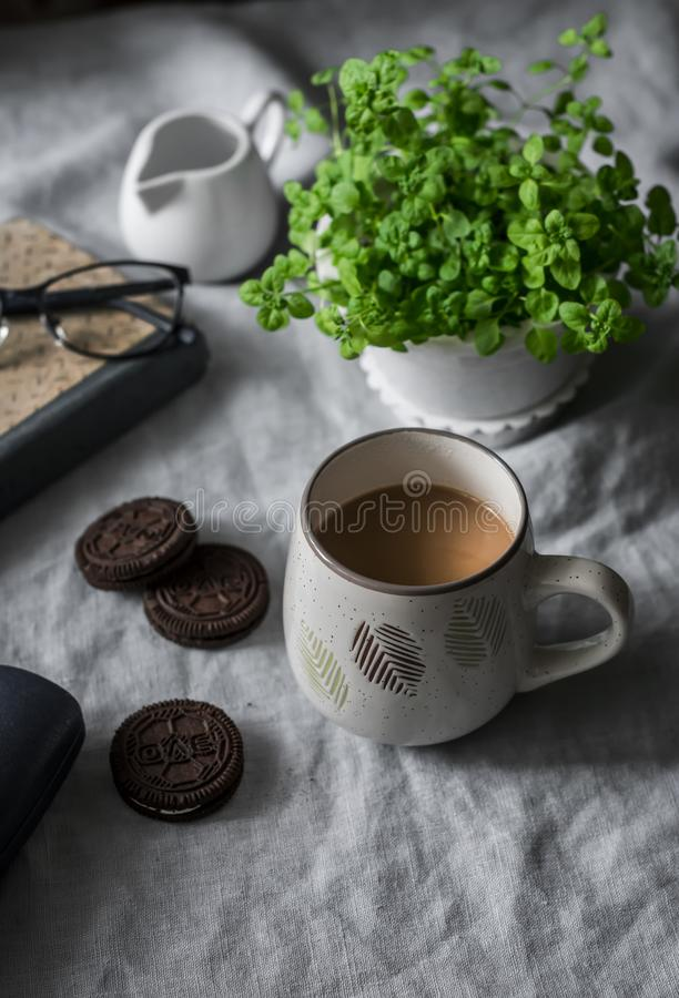 Cup of coffee with milk, chocolate cookies, flower pot, book - cozy morning still life table. Home lazy interior. Concept royalty free stock images