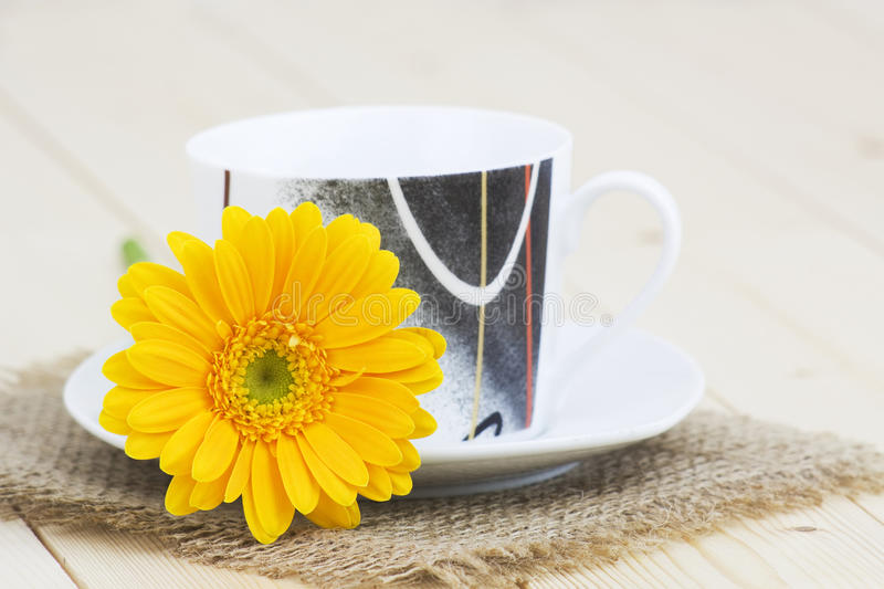Cup of coffee with orange gerbera stock images