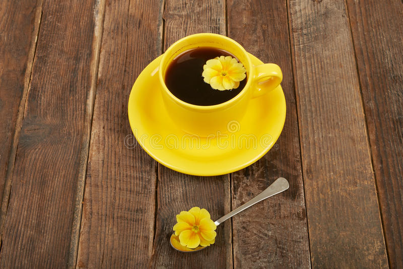 Cup of coffee with spices and flower on a wooden table backgroun. D royalty free stock image